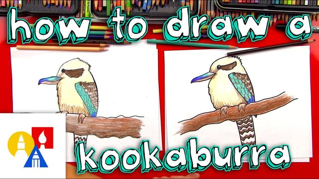 How To Draw A Kookaburra