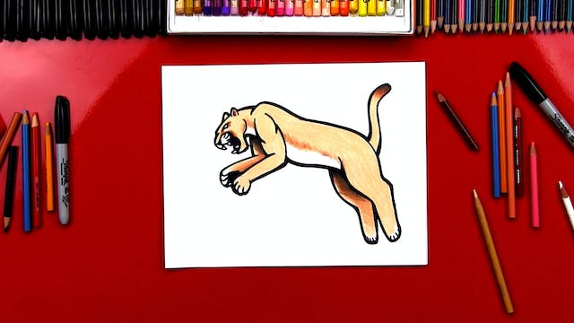 How To Draw A Realistic Cougar