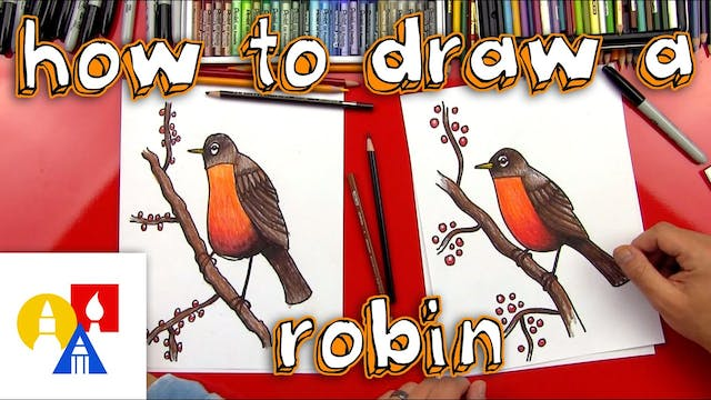 How To Draw A Realistic Robin Bird