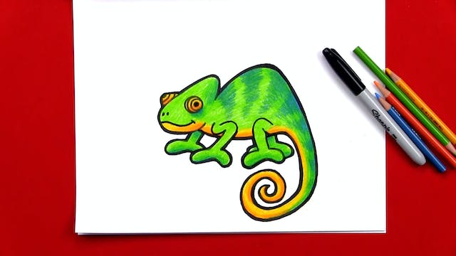 Member - How To Draw A Chameleon