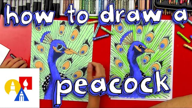 How To Draw A Peacock (realistic)