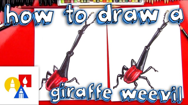 How To Draw A Giraffe Beetle