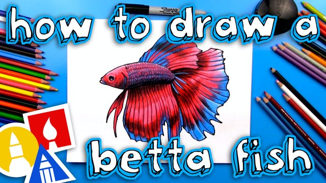 How To Draw A Realistic Betta Fish