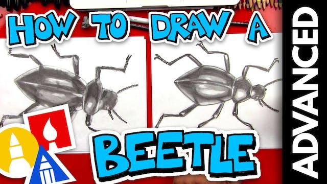How To Sketch A Beetle - Advanced Ske...