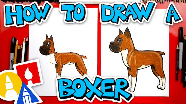 How To Draw A Cartoon Boxer