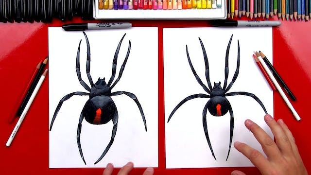 Member - How To Draw A Redback Spider