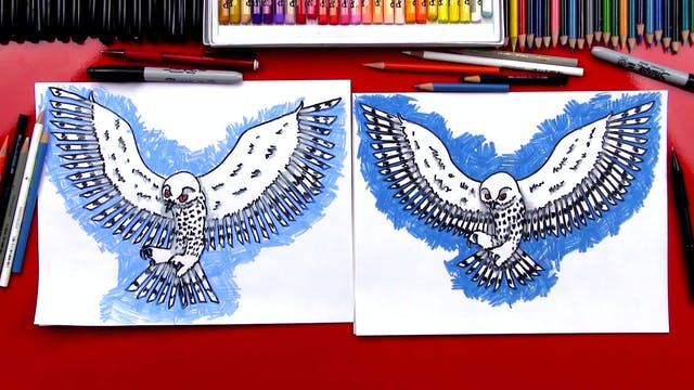 How To Draw A Realistic Snow Owl
