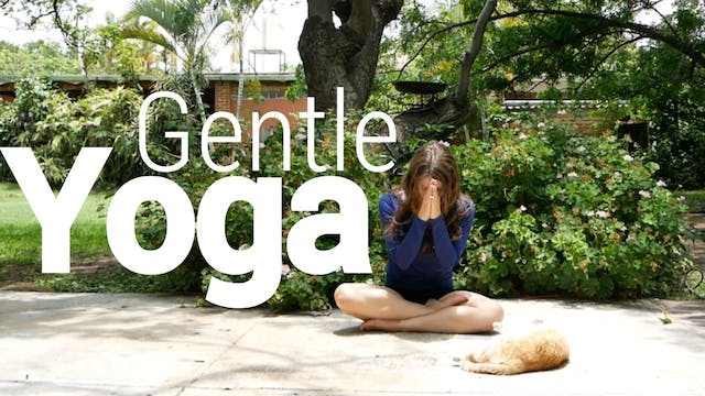 Gentle Yoga for Everyone - All Levels...