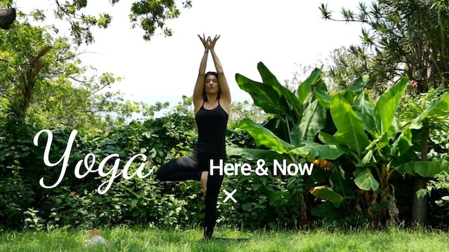 Yoga - Here and Now