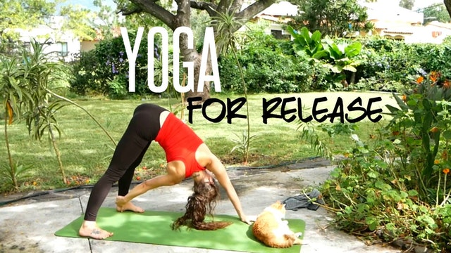 Yoga for Release & Letting Go (45 Minute Class - All Levels)