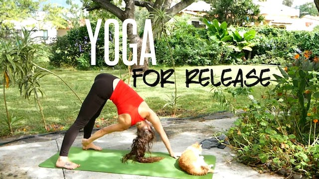 Yoga for Release & Letting Go (45 Min...