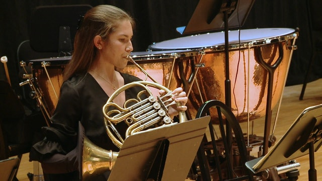 Beethoven 1 & Mozart's Clarinet Concerto