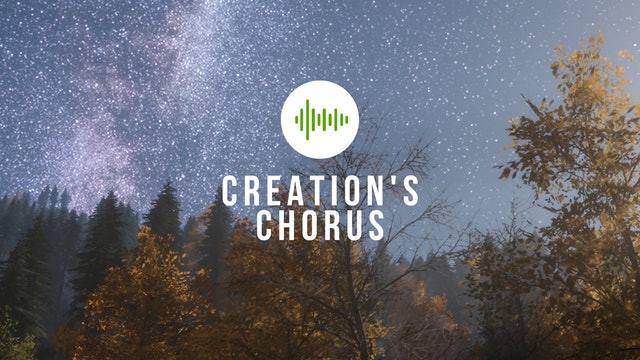 Creation's Chorus - Season 2 Compilation
