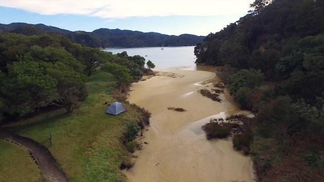 This Wild Idea! - Camping