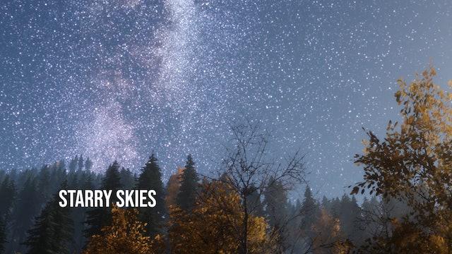 Creation's Chorus - Starry Skies