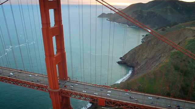 Bridge of Life