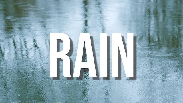 Creation's Chorus - Rain