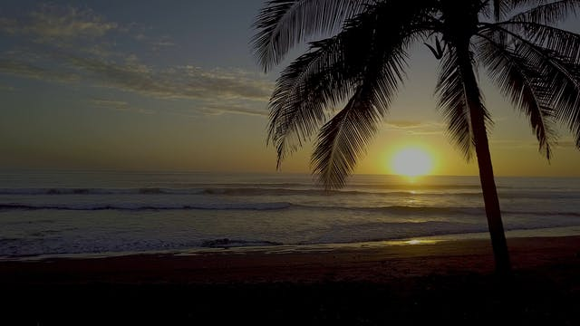 Creation's Chorus: Costa Rica - Beaut...