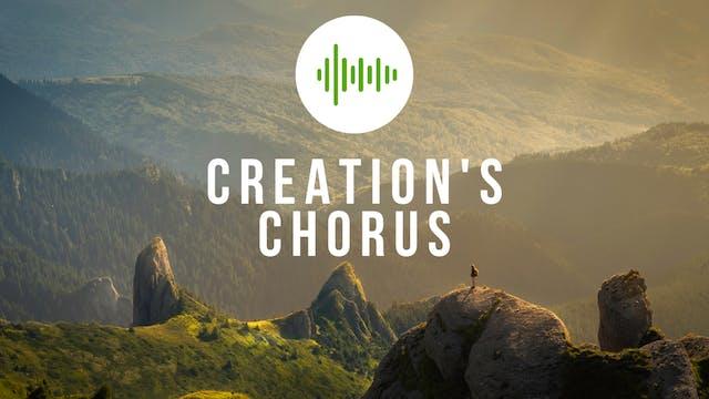 Creation's Chorus: Costa Rica II