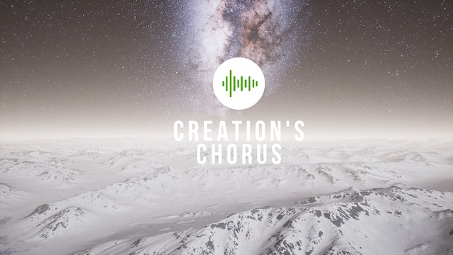 Creation's Chorus - Season 1 - One hour