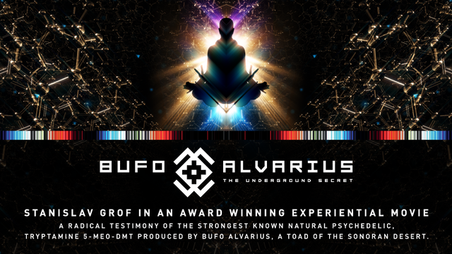 Bufo Alvarius - The Underground Secret | EIC