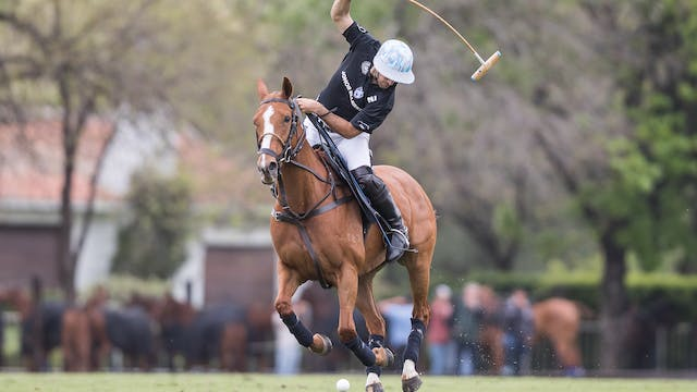 Ellerstina vs. La Albertina (Spanish)