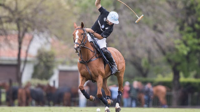 Ellerstina vs. Las Monjitas (Spanish)