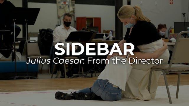 Sidebar Julius Caesar: From the Director