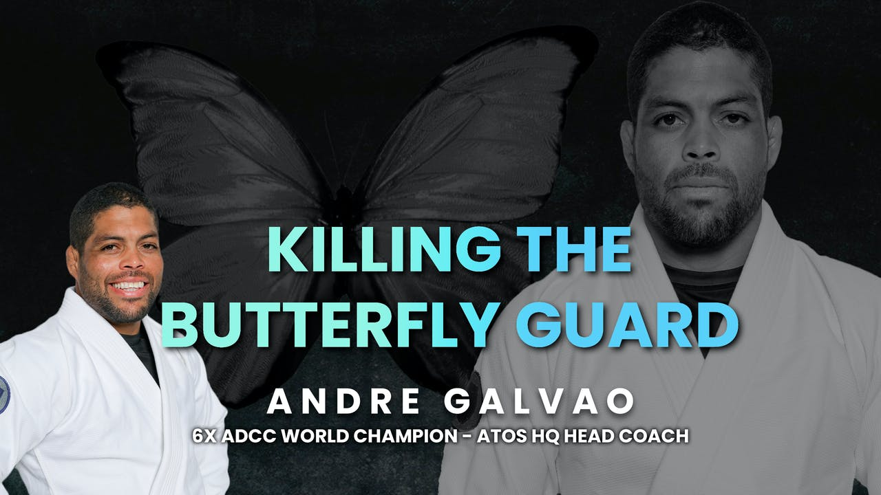 Killing The Butterfly Guard | Andre Galvao