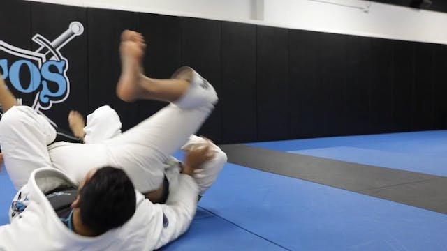 Using the Lasso Guard With Butterfly ...