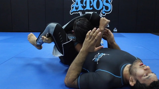 Straight Arm Bar & Triangle From the Knee Shield Position