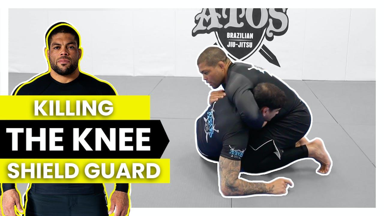 Killing the Knee Shield Half Guard   Andre Galvao