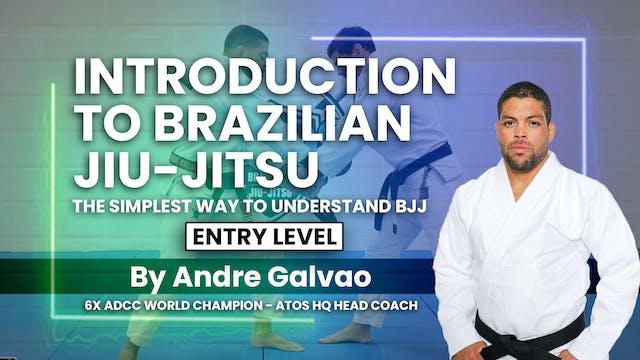 Basic Self Defense | Andre Galvao