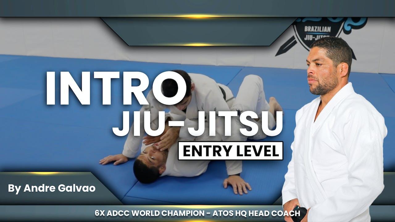 Intro to Brazilian Jiu-Jitsu   Andre Galvao