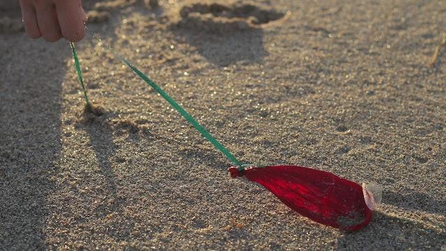 Defying Plastic