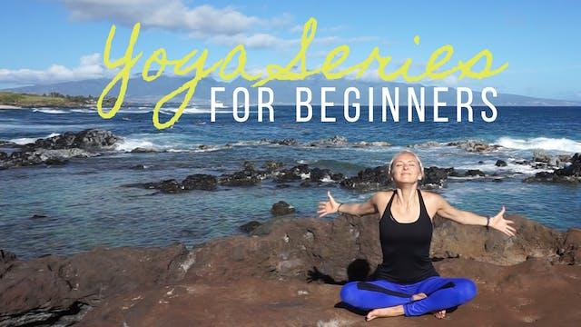 Yoga Series for Beginners