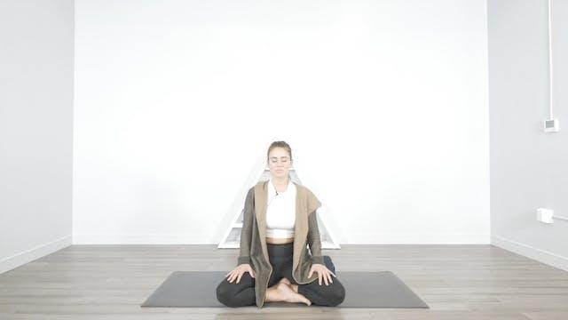 Vibrate Higher Meditation