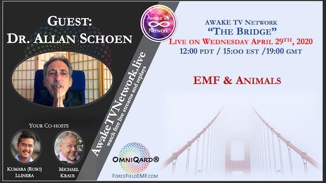 """""""The Bridge"""" Kumara (Ruso) Llanera & Michael Kraus with Dr. Allen Schoen S1E3"""