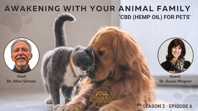 """""""CBD for Pets - What You Need to Know..."""