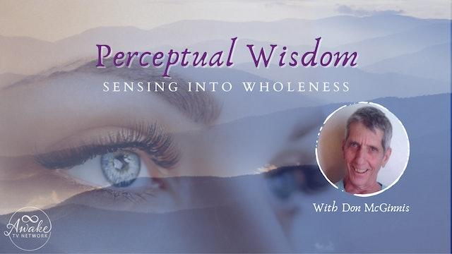 """""""Perceptual Wisdom - Sourcelessness"""" with Don McGinnis S5E8"""