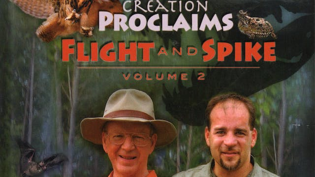 Creation Proclaims Vol.1 - Flight & Spike