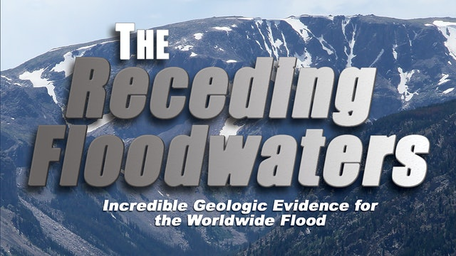 The Receding Floodwaters: Global Evidence for the World Wide Flood