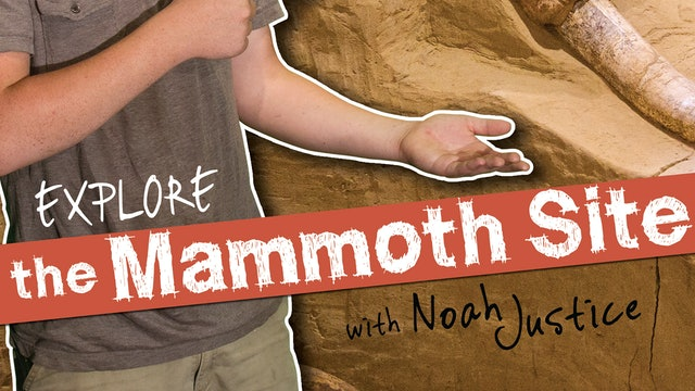 """Awesome Science """"The Mammoth Site"""" Episode"""