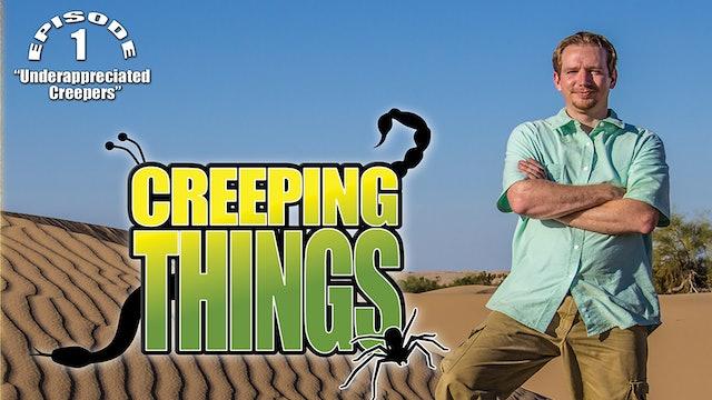 "Creeping Things ""Underappreciated Creepers"""