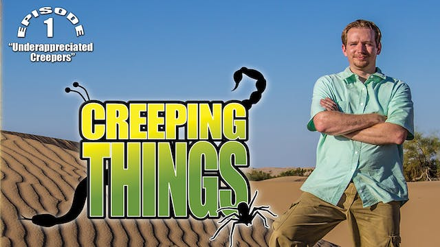 "Creeping Things ""Underappreciated Creepers"""