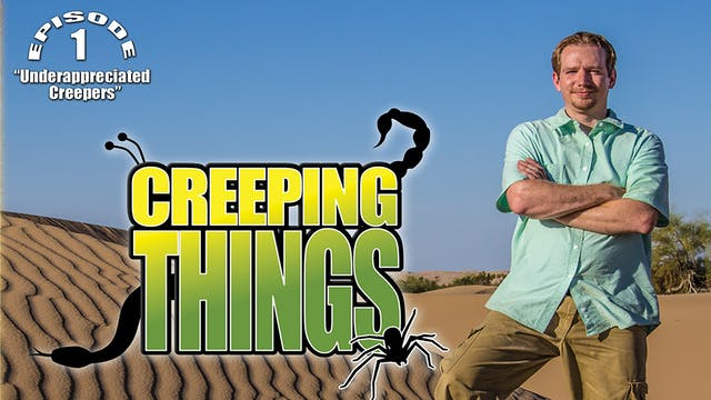 "Creeping Things ""Underappreciated Cre..."