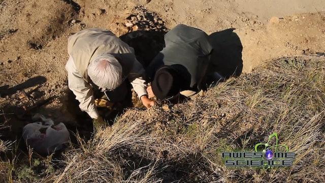 AS Glendive Fossil Digging