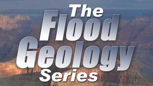 The Flood Geology Series