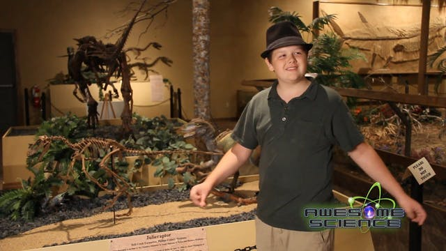 AS Noah's Glendive Dinosaur & Fossil Museum Bloopers