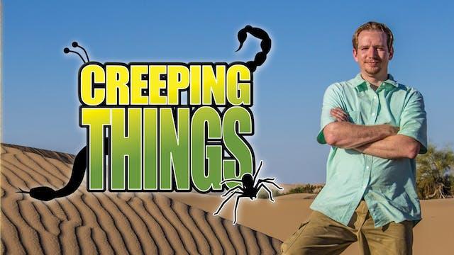 Creeping Things